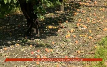 Grêle: gros dégâts dans la région de Saillon