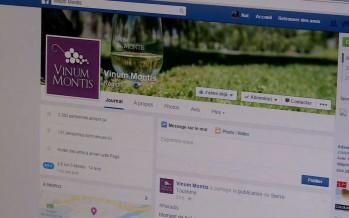 Vinum Montis: Sierre veut se positionner comme capitale suisse du vin