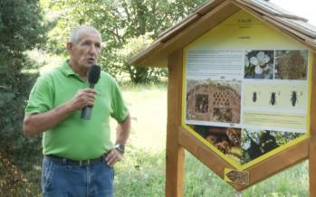 Balade couleur miel: à la découverte de l'apiculture