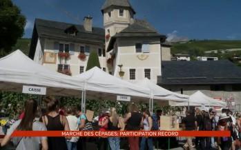 Marche des cépages: participation record