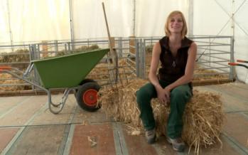 Dans les pas de Mélanie Décaillet, responsable de la ferme de la Foire