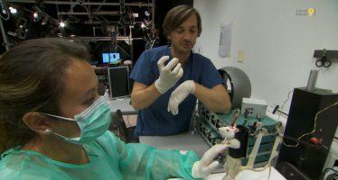 Futur de la médecine: au cœur de la révolution médicale