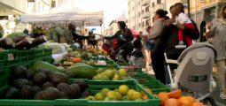 Communales 2016: des stands politiques installés entre fruits et légumes