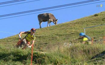 Des vététistes du monde entier disputent la (difficile) Perskindol Swiss Epic entre Zermatt et Verbier