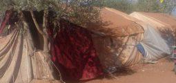 """""""J'aide comme je peux"""": une association valaisanne s'implique sur le terrain en Syrie"""