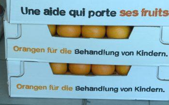 Terre des Hommes Valais: plus de 10 tonnes d'oranges distribuées grâce à 500 bénévoles