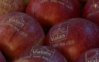 Marque Valais: le label s'ouvre aux manifestations et organes de promotion