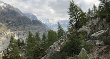 Aletsch, la montagne sous haute surveillance