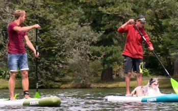 Stand up paddle sur le lac de Champex: une activité du Pass Saint-Bernard qui a du succès