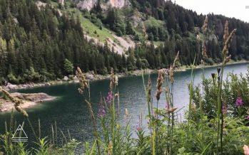 Le Valais par les lacs – Taney (8/8)