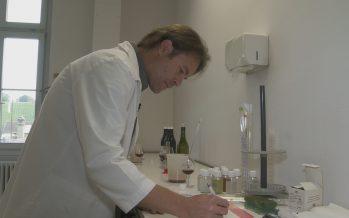 Les vins vaudois entre les mains d'un Valaisan: le Sierrois Samuel Panchard est l'œnologue du canton de Vaud