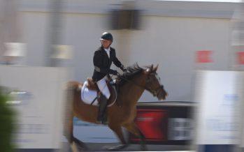 Le Romandie Horse Show réunit 250 cavaliers à Sion. C'est le 4e concours équestre à Sion cette année