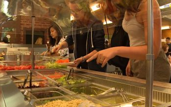 Produits du terroir, plats équilibrés ou végétariens… Les cantines scolaires s'adaptent aux changements de société