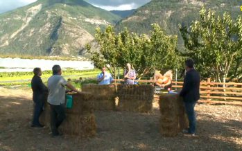 La Suisse produit à peine la moitié des aliments qu'elle consomme. Quel avenir pour les agriculteurs et producteurs en Valais?