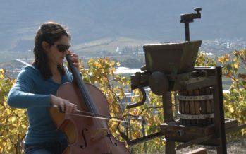 La violoncelliste Estelle Revaz a eu l'honneur de vendanger la plus petite vigne du monde, la vigne à Farinet