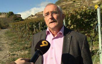 Plus proche de ses encaveurs et de ses vignes, le Romand boit davantage local. C'est ce que révèle une étude sur le marché du vin suisse