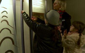 La culture avec les enfants (3 sur 4): La Nuit des musées à hauteur d'enfant