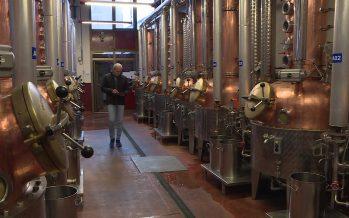 PRIX SOMMET 2017: comment la distillerie Morand à Martigny a-t-elle pris le tournant numérique?