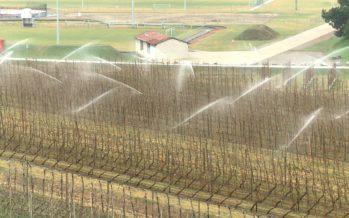 Protection contre le gel par aspersion: ce printemps, le Valais agricole a investi 2 millions et demi de francs