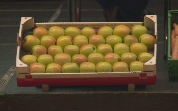 Si les fruits ont souffert en 2017, du côté des légumes, on note une augmentation de la production, constate l'interprofession