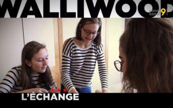Walliwood (11 sur 12): la route est courte jusqu'à la fin de l'année mais… longue pour devenir bilingue