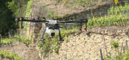 Un drone peut-il concurrencer l'hélicoptère pour le sulfatage des vignes en Valais?