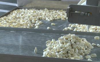 À Eyholz, Pasta Destefano produit des pâtes fraîches (presque) 100% valaisannes depuis 2011