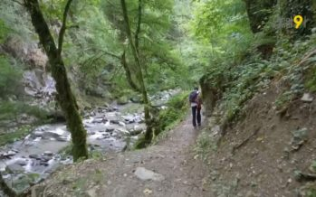 Les gorges de la Vièze, un havre de paix au cœur de Monthey. Une balade entre nature et histoire industrielle
