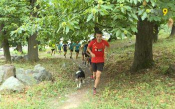 Dernier entraînement collectif avant Sierre-Zinal pour BCVs Mount Asics Team