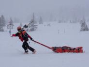 Les accidents de ski et de snowboard: leur nombre, leur coût, les traitements et la prévention