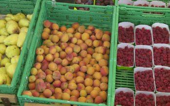 L'agriculture et les denrées alimentaires dans les urnes le 23 septembre. Les partisans des initiatives s'expriment