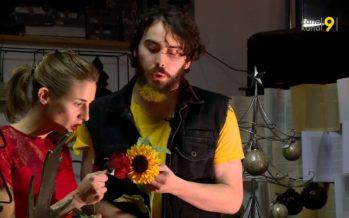 Bloom, amour (presque) impossible entre une rose et un tournesol: un spectacle pour enfants à découvrir chez le fleuriste
