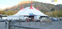 Le cirque Knie a dressé son chapiteau en Valais: à Sion jusqu'au 21 octobre, à Martigny du 22 au 24 octobre