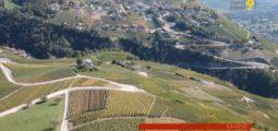 Le morcellement et vieillissement de la vigne, en Valais, sont de vrais problèmes. Explications avec Pierre-Antoine Héritier