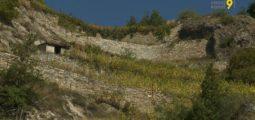 Sauvetage des murs en pierres sèches: des solutions pour sauvegarder ce patrimoine typique du Valais