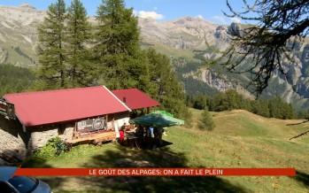 Goût des alpages à Anzère: la balade gourmande a fait le plein