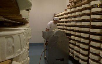 La fromagerie d'Étiez: des meules en vente au distributeur