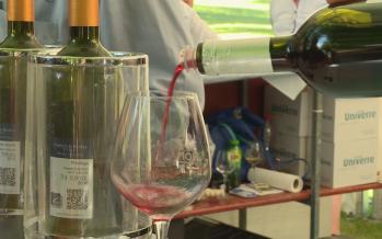 L'État du Valais prend à sa charge les cotisations privées des vignerons et des encaveurs pour la promotion des vins suisses