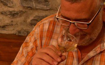 L'AOC, c'est bientôt fini! Le monde du vin doit passer au niveau des AOP