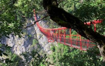 Des acrophobes apprivoisent leur peur du vide en marchant sur – l'impressionnant – pont suspendu de Niouc