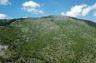 Par le passé, quatre grands incendies ont dévasté Finges, une des plus grandes pinèdes d'Europe