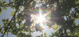 Alerte canicule en Valais: des pics à plus de 35 degrés annoncés! Le médecin cantonal donne quelques conseils