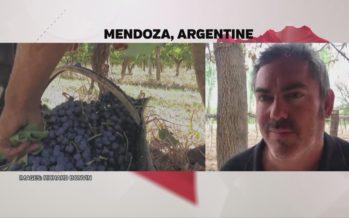 «Au bout du web»: l'actualité commentée depuis l'Argentine par l'œnologue Richard Bonvin