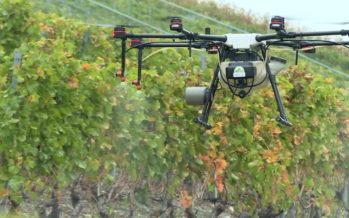 Au pays de l'épandage, le drone est roi