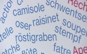 Panosse, natel et Röstigraben: plongée au coeur des helvétismes, ces expressions que seuls les Suisses peuvent comprendre