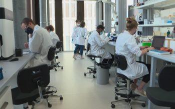 La HES-SO débarque enfin dans ses laboratoires sur le campus Energypolis