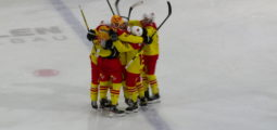 Hockey sur glace: Sierre surprend Viège dans le derby