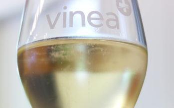 """VINEA : un Grand Prix du Vin Suisse """"pétillant"""""""