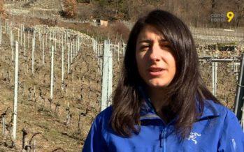 «J'ai toujours voulu faire ça!», confie Mathilde Roux, vigneronne sur les coteaux de Fully