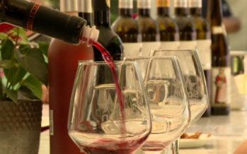 12e édition du Jardin des vins: la fréquentation pourrait battre des records